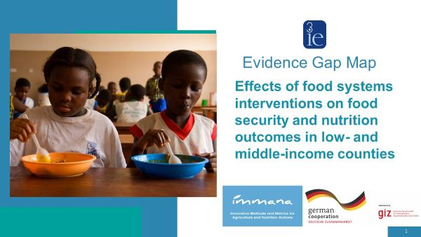 Expert panel: 3ie's new food system Evidence Gap Map offers a roadmap of the field