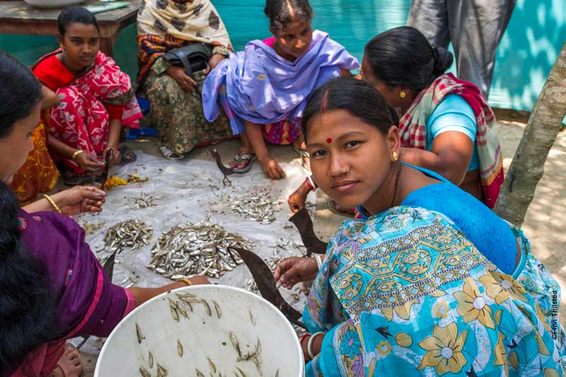 Impacts of aquaculture on livelihoods, nutrition and women's empowerment in Bangladesh