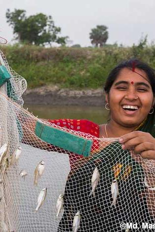 Can aquaculture help livelihoods, nutrition, and social empowerment? Our new systematic review is investigating